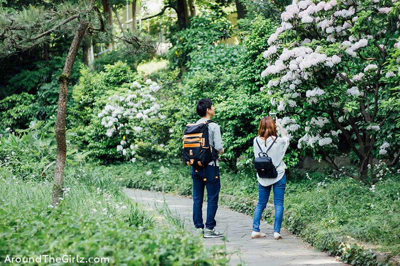 inokashira park 10